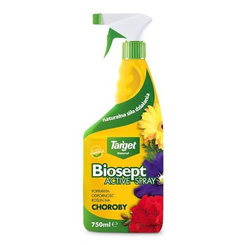 Biosept Active Spray 750 ml