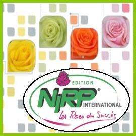 NIRP roses