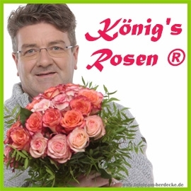 König's Rosen ®