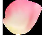 element3