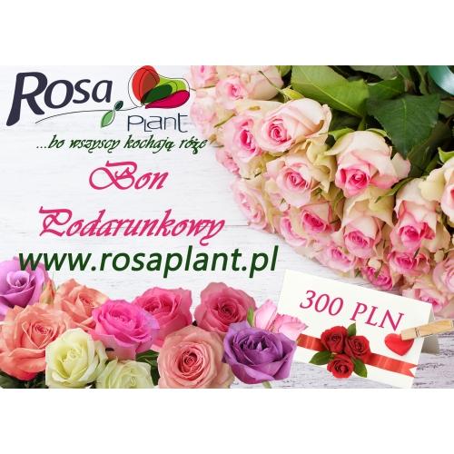 Bon Podarunkowy 300 PLN z rabatem 10 zł