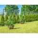 Stożek ogrodowy 90-180 cm