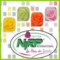 Розы NIRP