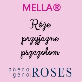 MELLA® roses for bees